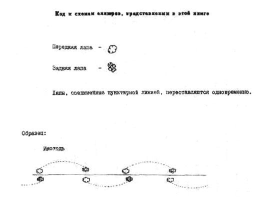 1-3.jpg