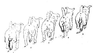 1-76.jpg